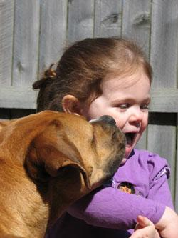 Dog kissing little girl